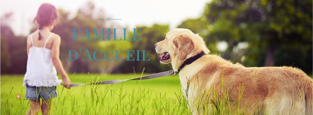 famille-accueil-animaux-chien-chat