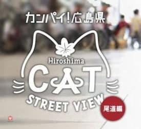 cat-street-view-05