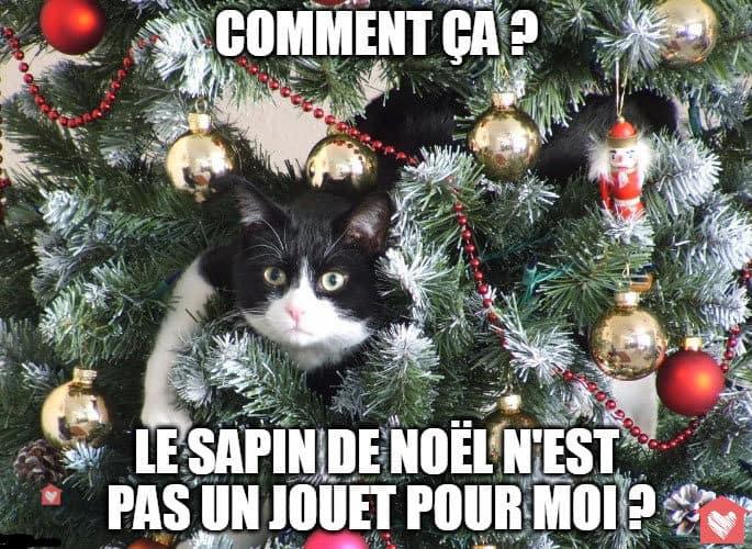chat-sapin-noel-jouet