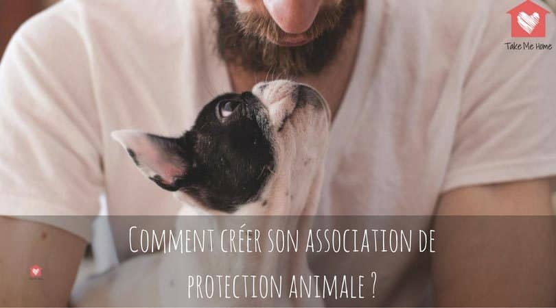 comment créer son association de protection animale