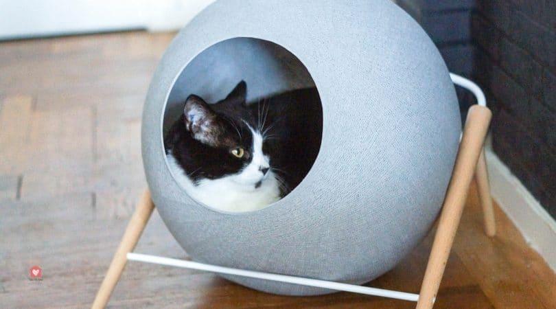 sieste couchage chat avis meyou design